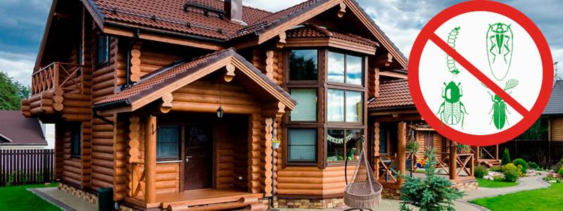 Фумигация газом деревянного дома: ликвидация жуков с гарантией